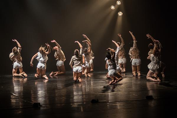 <p>Resguardo y memoria. Novedades de la Mediateca Danza UNAM</p>
