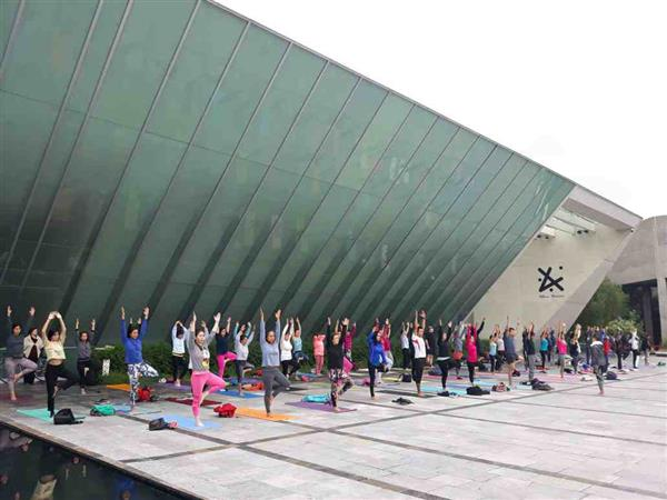 <p>Clase de Yoga Dominical</p>