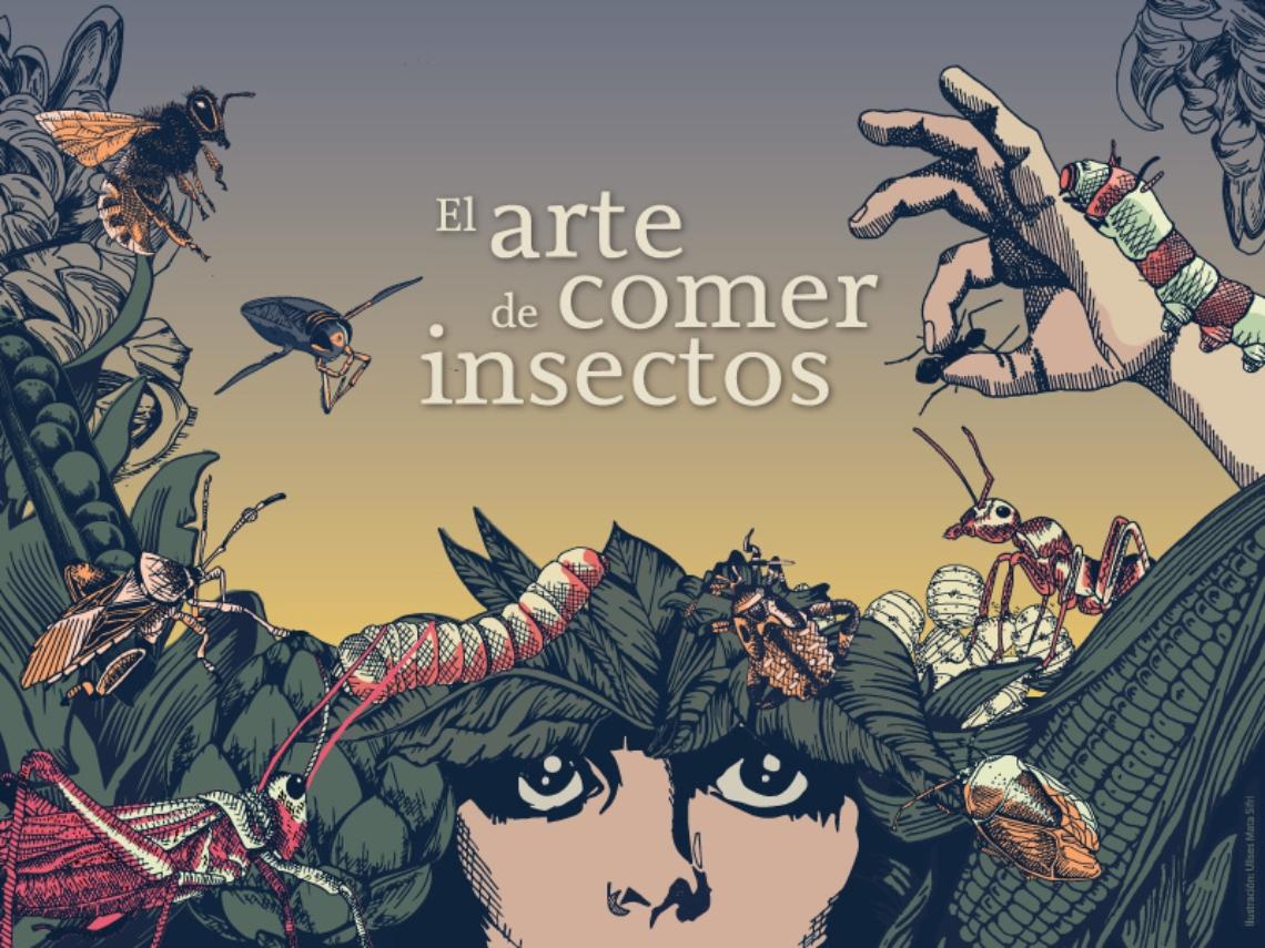 <p><strong>El arte de comer insectos</strong></p>