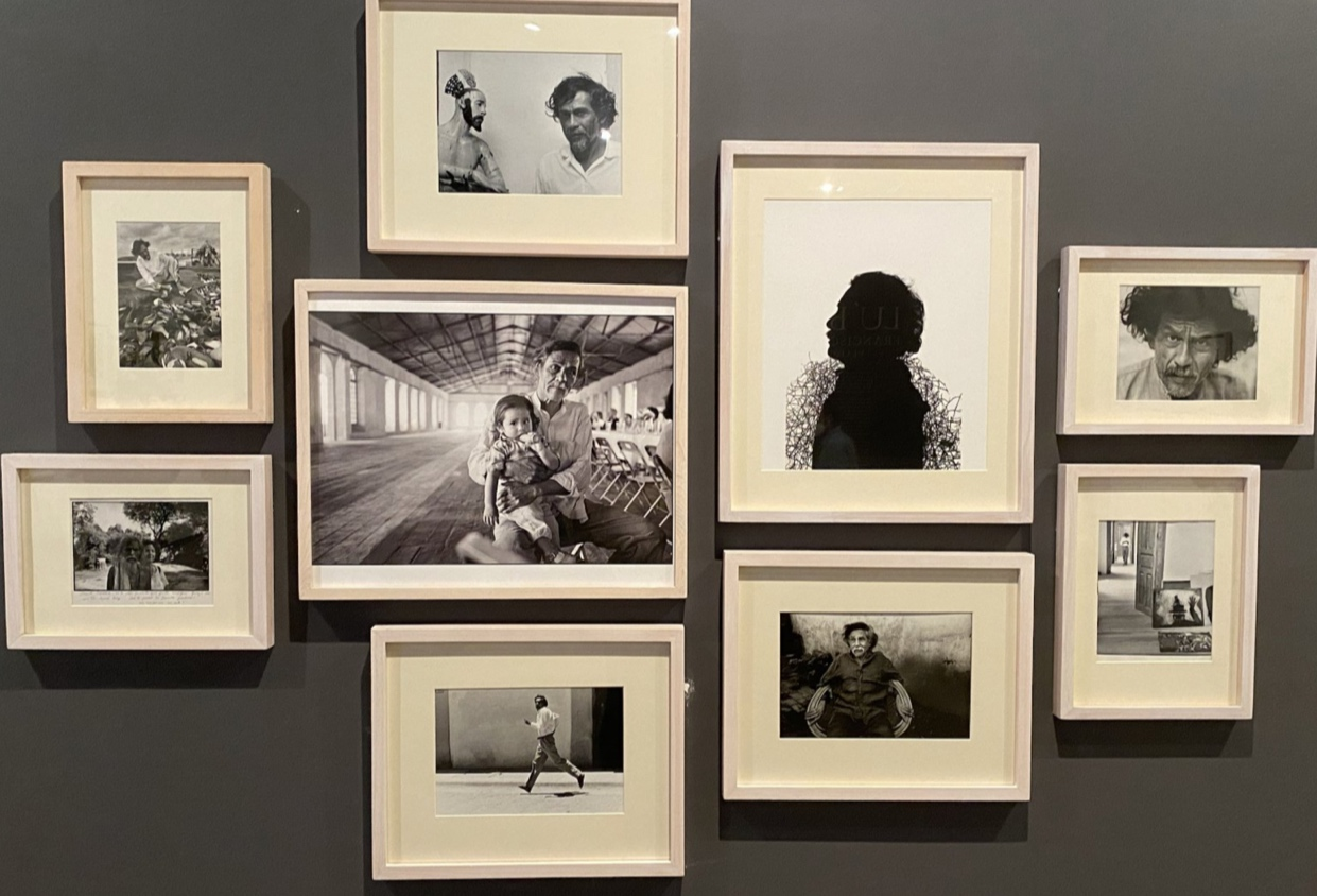 <p><em>Lu'Biaani: Francisco Toledo y la fotografía</em></p>